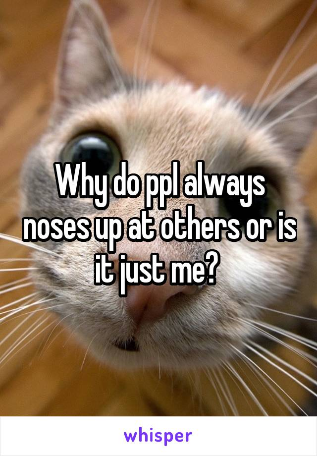 Why do ppl always noses up at others or is it just me?