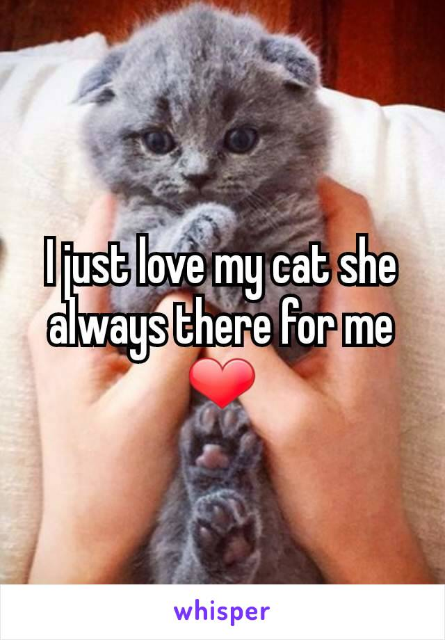 I just love my cat she always there for me ❤