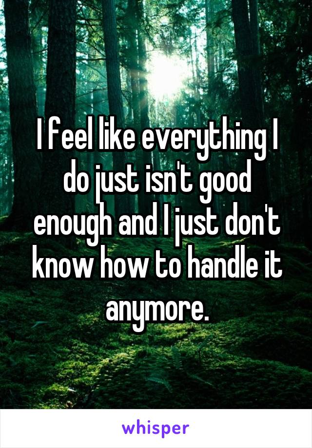 I feel like everything I do just isn't good enough and I just don't know how to handle it anymore.