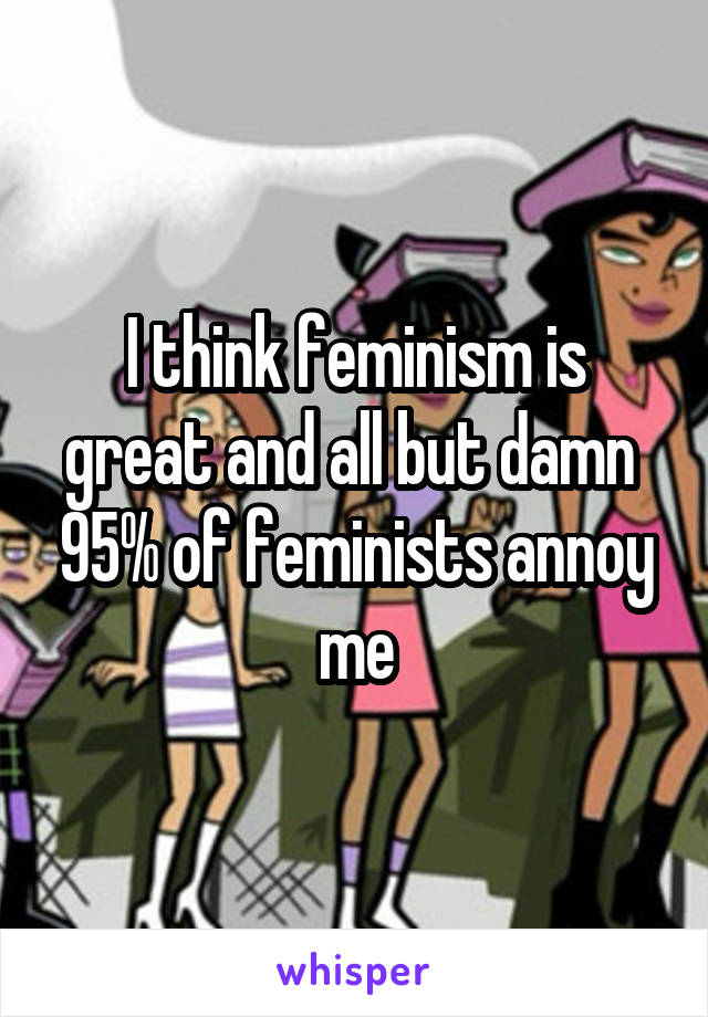 I think feminism is great and all but damn  95% of feminists annoy me