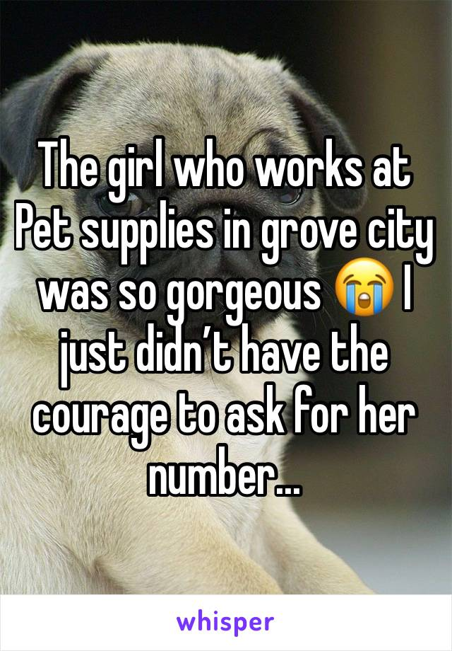 The girl who works at Pet supplies in grove city was so gorgeous 😭 I just didn't have the courage to ask for her number...