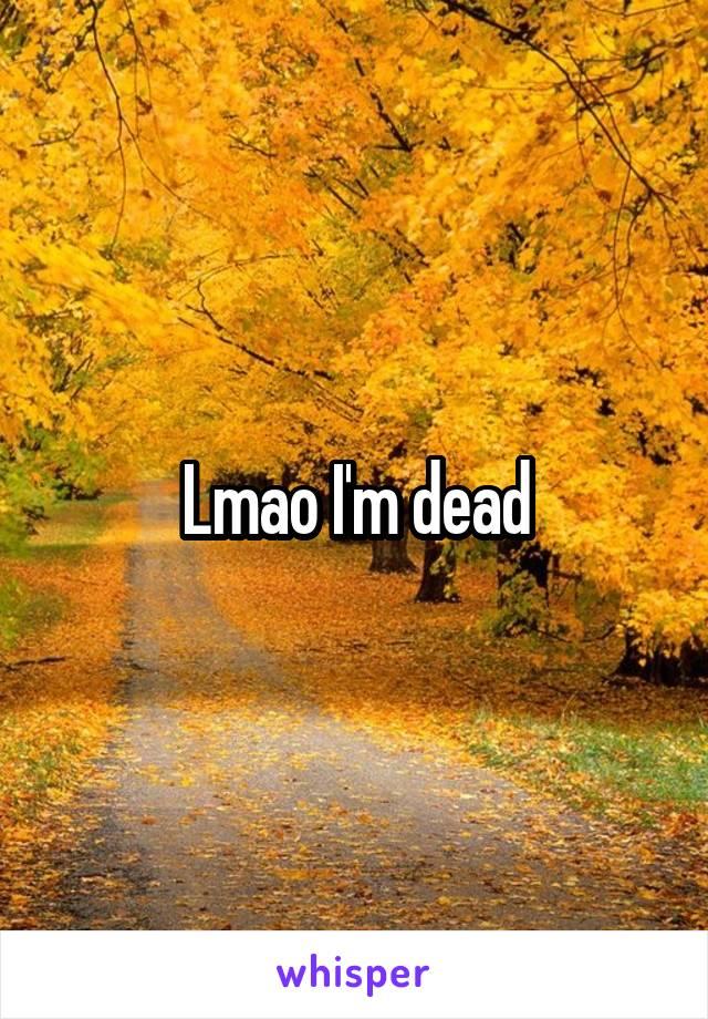 Lmao I'm dead