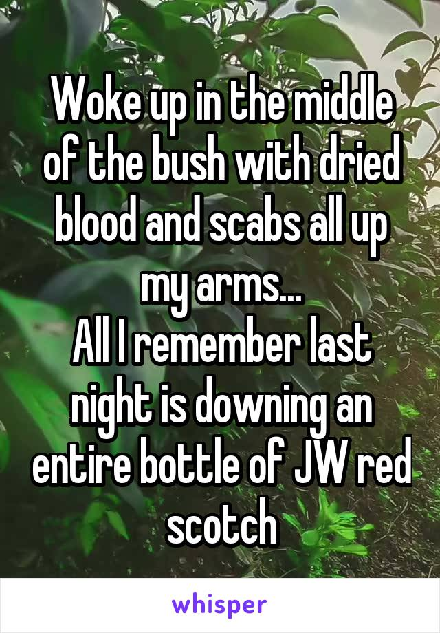 Woke up in the middle of the bush with dried blood and scabs all up my arms... All I remember last night is downing an entire bottle of JW red scotch