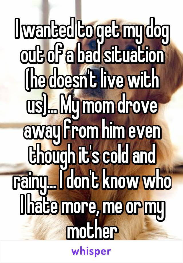 I wanted to get my dog out of a bad situation (he doesn't live with us)... My mom drove away from him even though it's cold and rainy... I don't know who I hate more, me or my mother
