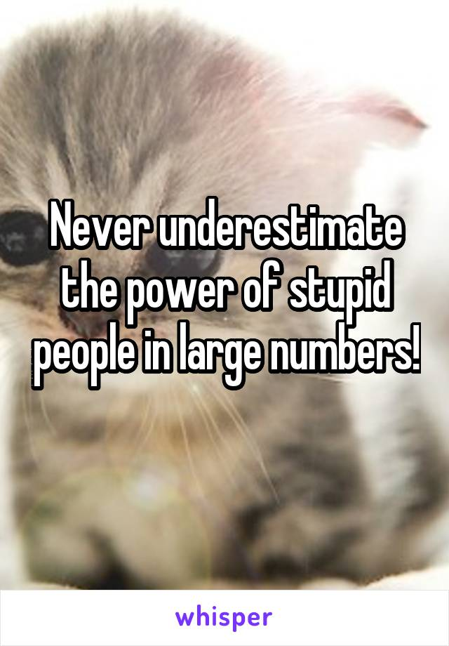 Never underestimate the power of stupid people in large numbers!