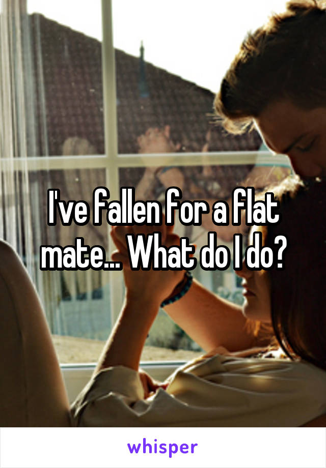 I've fallen for a flat mate... What do I do?