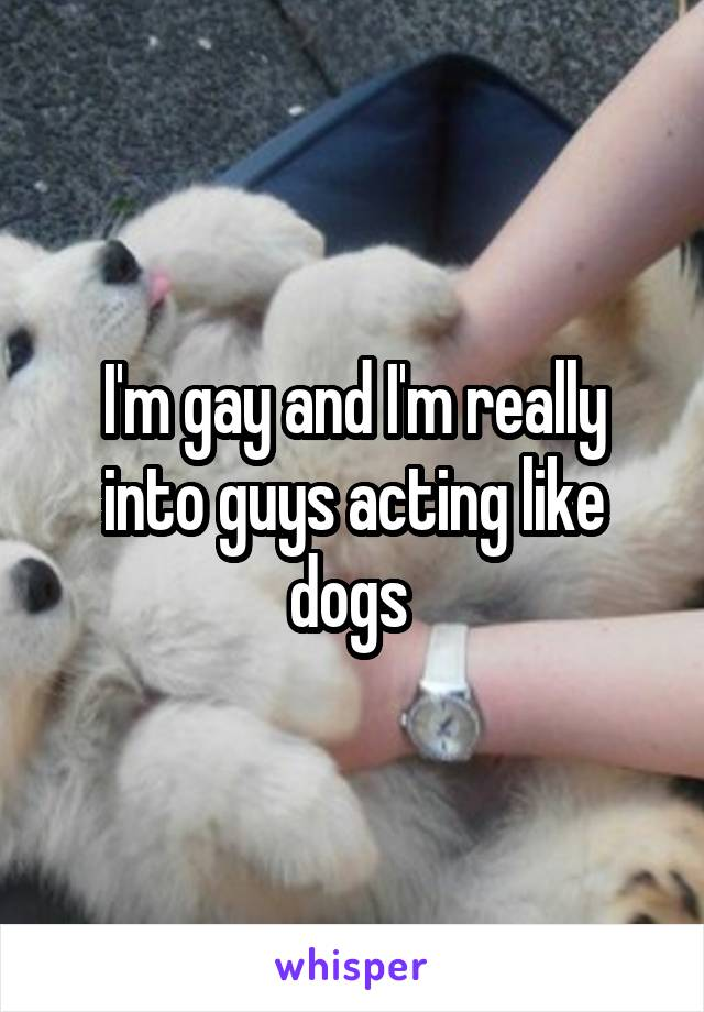I'm gay and I'm really into guys acting like dogs