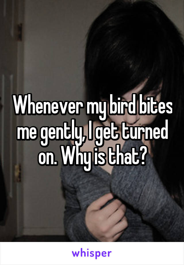 Whenever my bird bites me gently, I get turned on. Why is that?