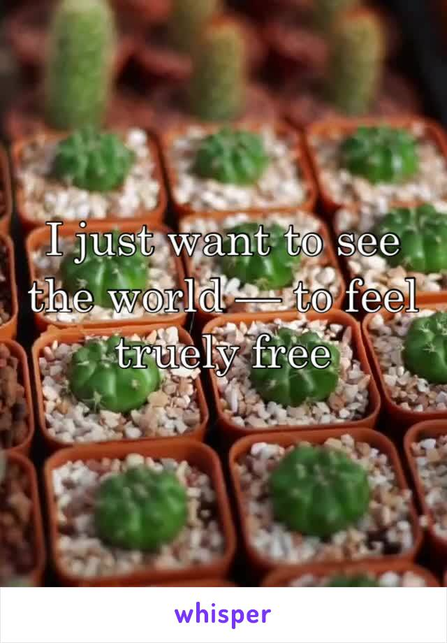 I just want to see the world — to feel truely free
