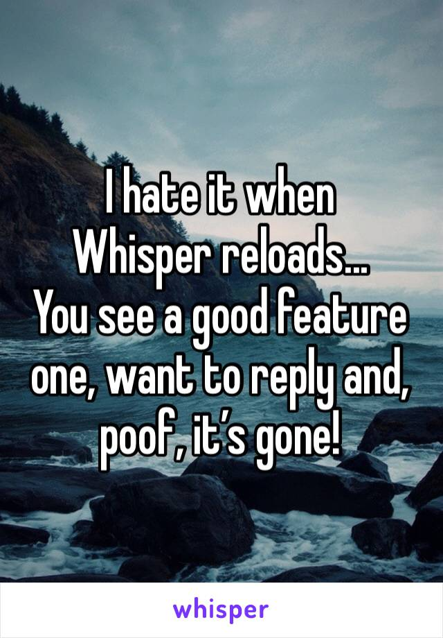 I hate it when Whisper reloads... You see a good feature one, want to reply and, poof, it's gone!