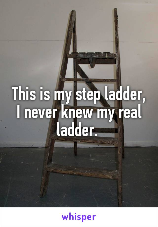 This is my step ladder, I never knew my real ladder.