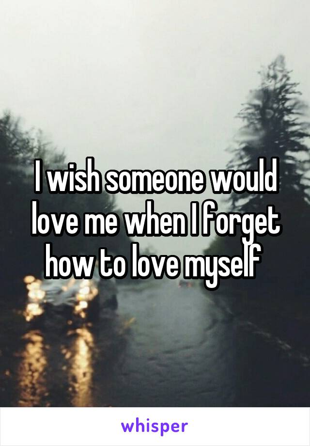 I wish someone would love me when I forget how to love myself
