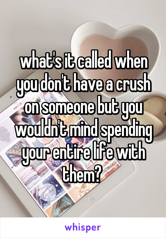 what's it called when you don't have a crush on someone but you wouldn't mind spending your entire life with them?