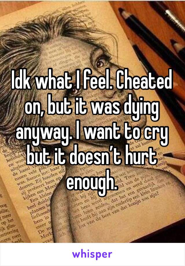 Idk what I feel. Cheated on, but it was dying anyway. I want to cry but it doesn't hurt enough.