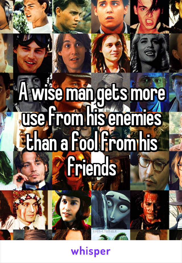 A wise man gets more use from his enemies than a fool from his friends