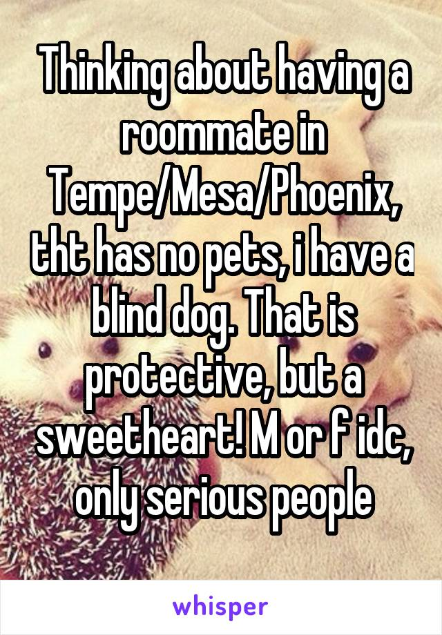 Thinking about having a roommate in Tempe/Mesa/Phoenix, tht has no pets, i have a blind dog. That is protective, but a sweetheart! M or f idc, only serious people