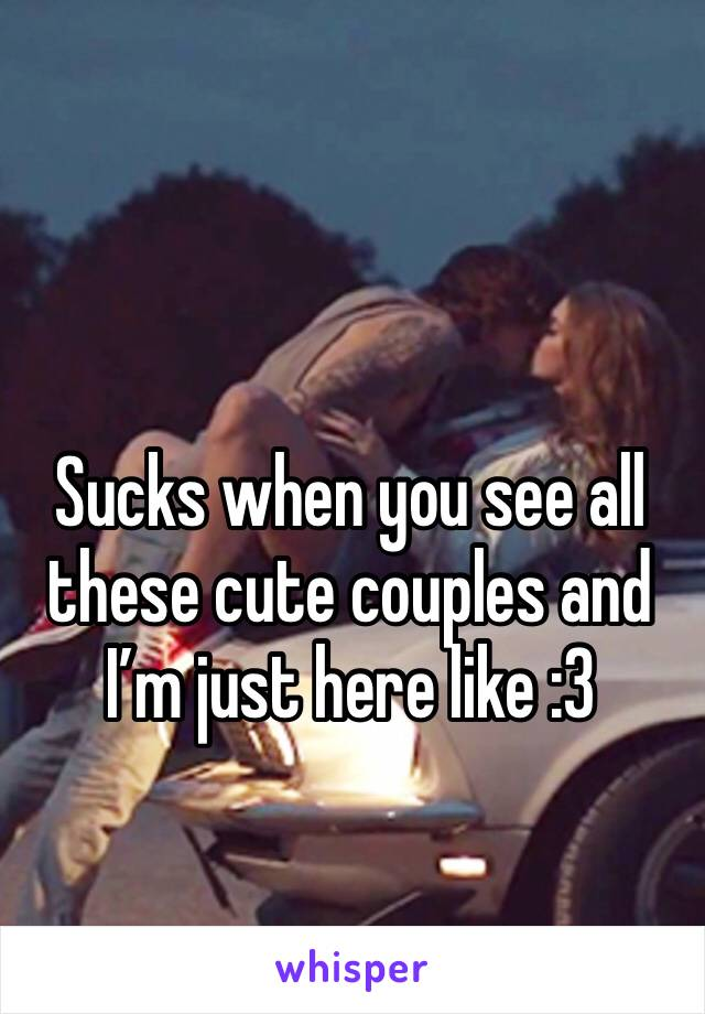 Sucks when you see all these cute couples and I'm just here like :3