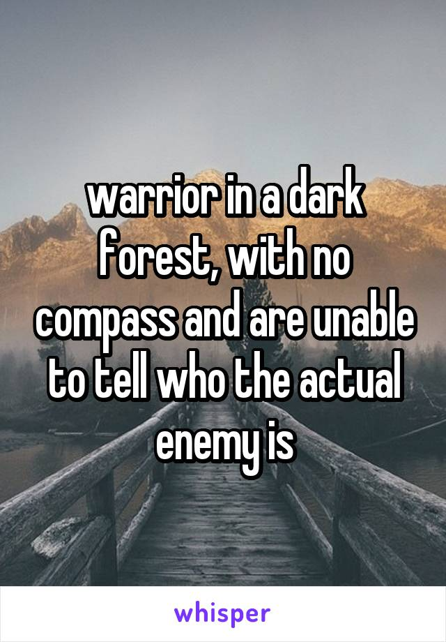 warrior in a dark forest, with no compass and are unable to tell who the actual enemy is