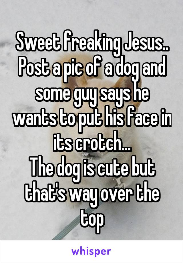 Sweet freaking Jesus.. Post a pic of a dog and some guy says he wants to put his face in its crotch... The dog is cute but that's way over the top