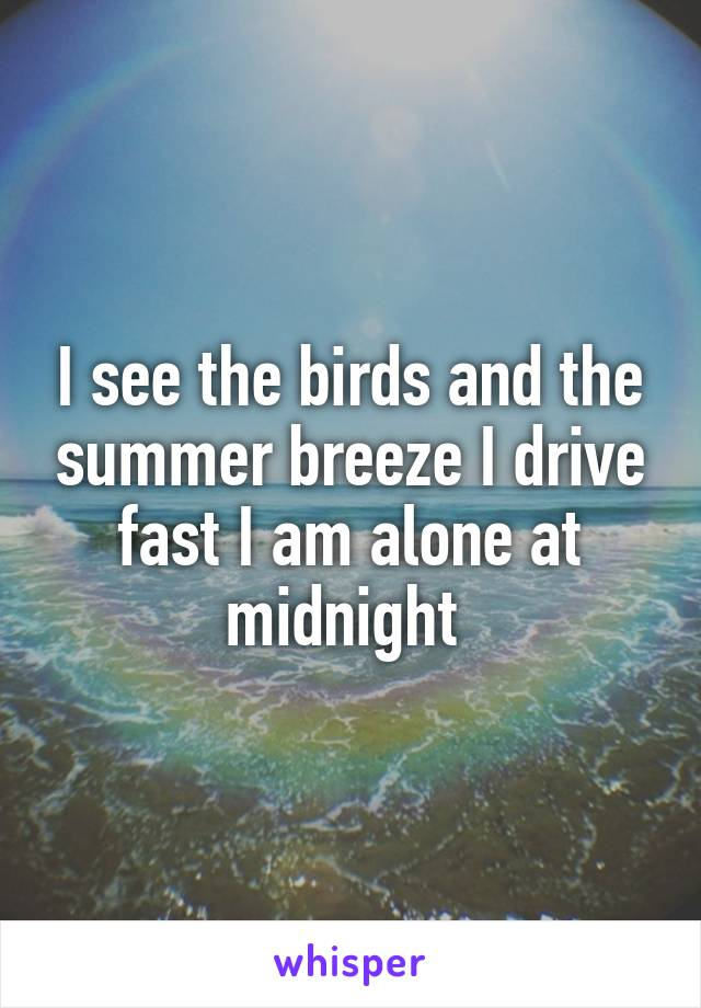 I see the birds and the summer breeze I drive fast I am alone at midnight