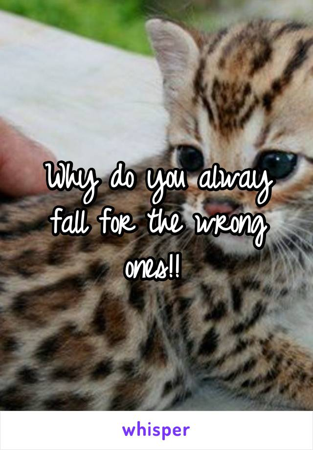 Why do you alway fall for the wrong ones!!