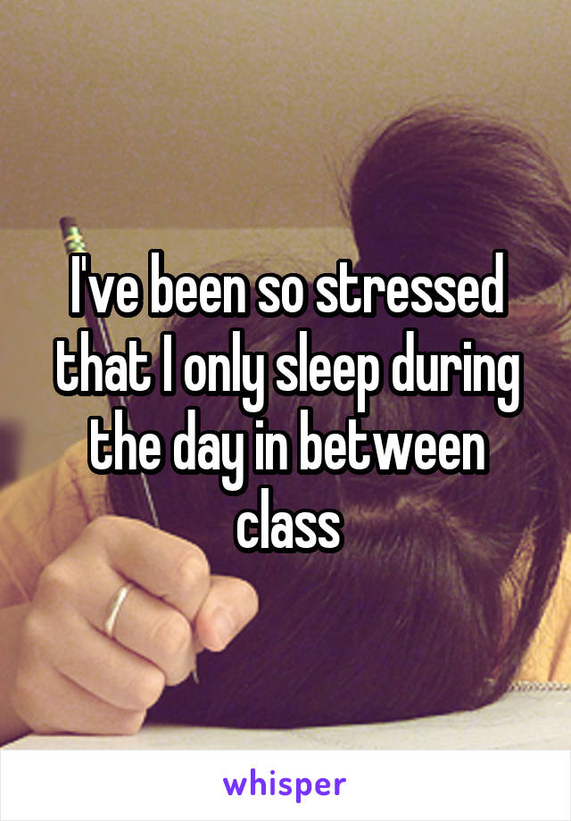 I've been so stressed that I only sleep during the day in between class