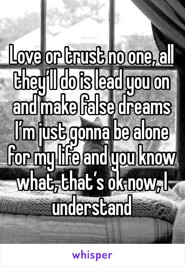 Love or trust no one, all they'll do is lead you on and make false dreams  I'm just gonna be alone for my life and you know what, that's ok now, I understand