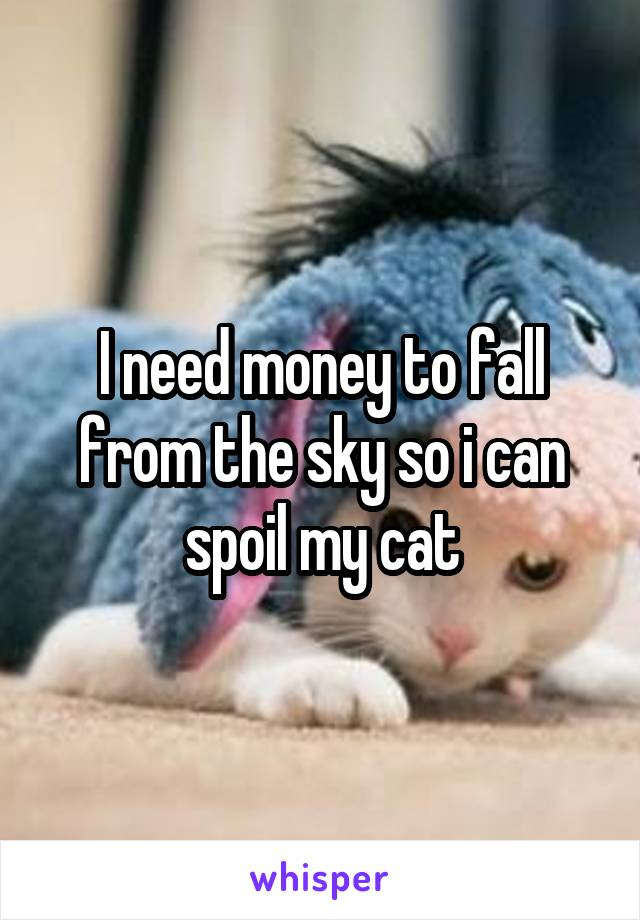 I need money to fall from the sky so i can spoil my cat