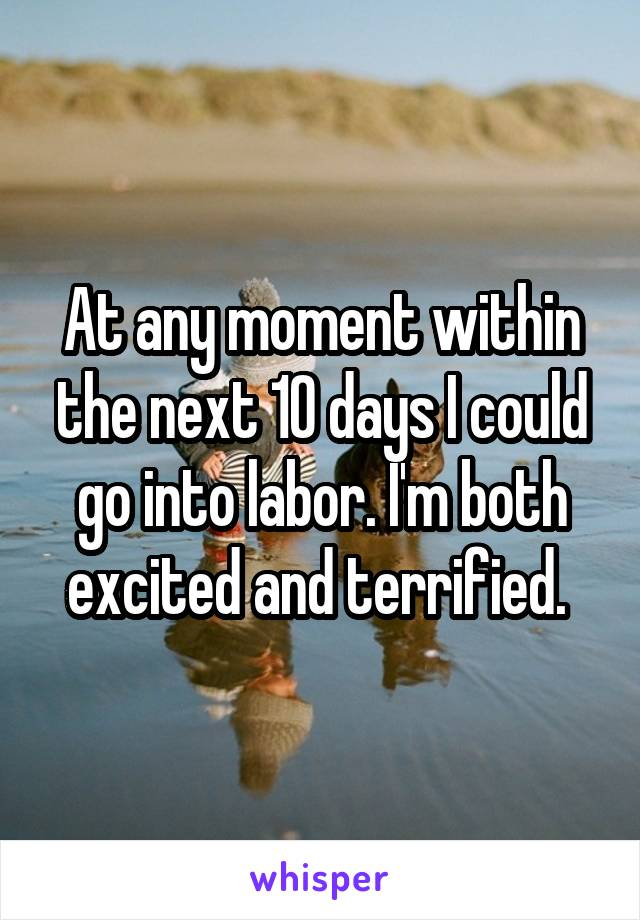 At any moment within the next 10 days I could go into labor. I'm both excited and terrified.