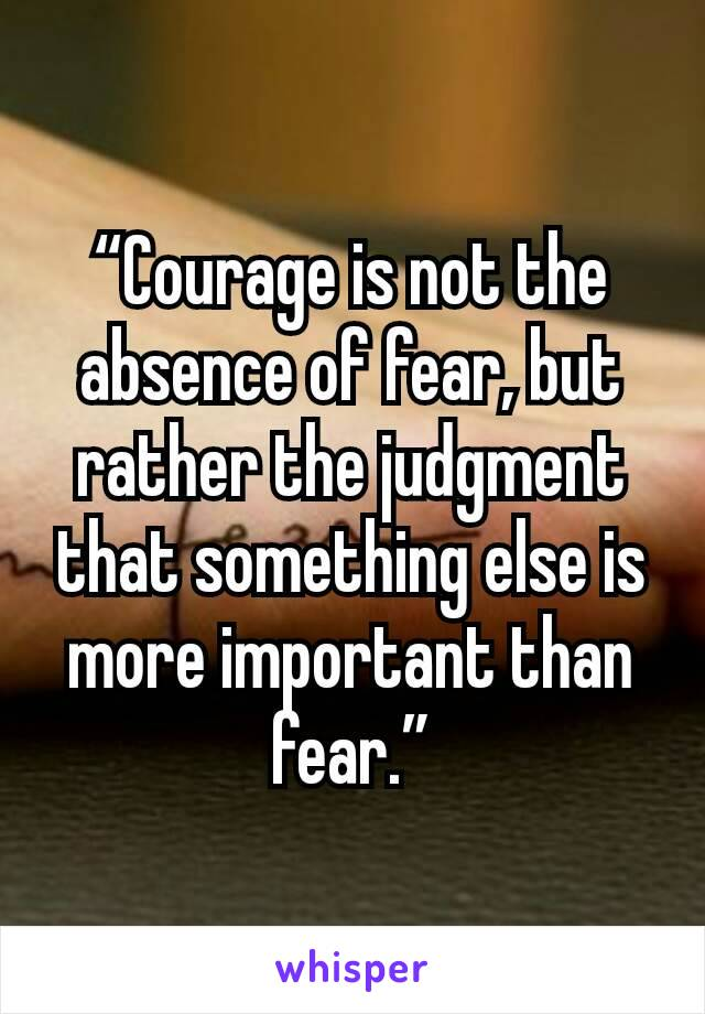 """""""Courage is not the absence of fear, but rather the judgment that something else is more important than fear."""""""