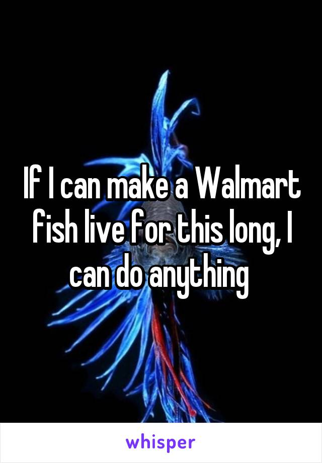 If I can make a Walmart fish live for this long, I can do anything