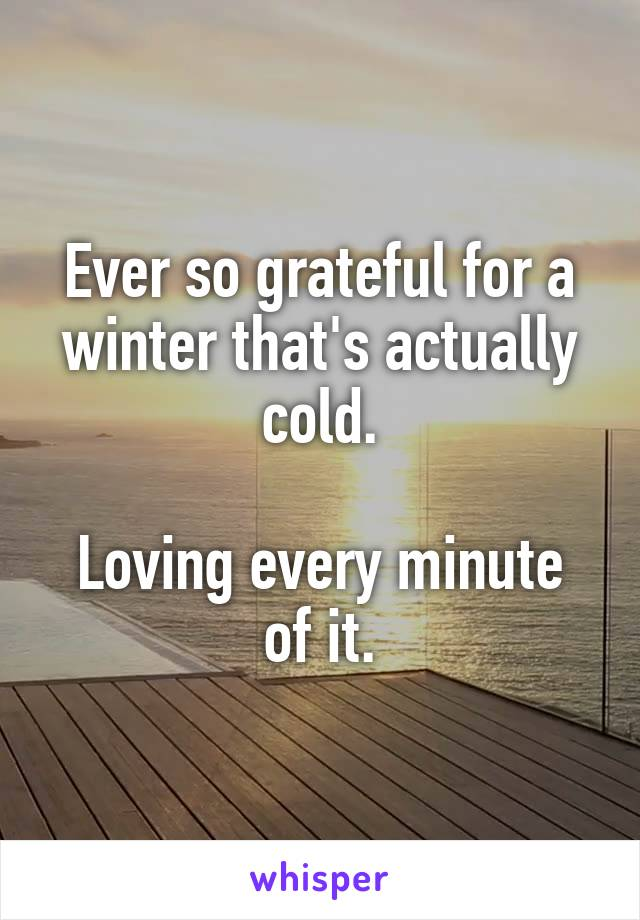 Ever so grateful for a winter that's actually cold.  Loving every minute of it.