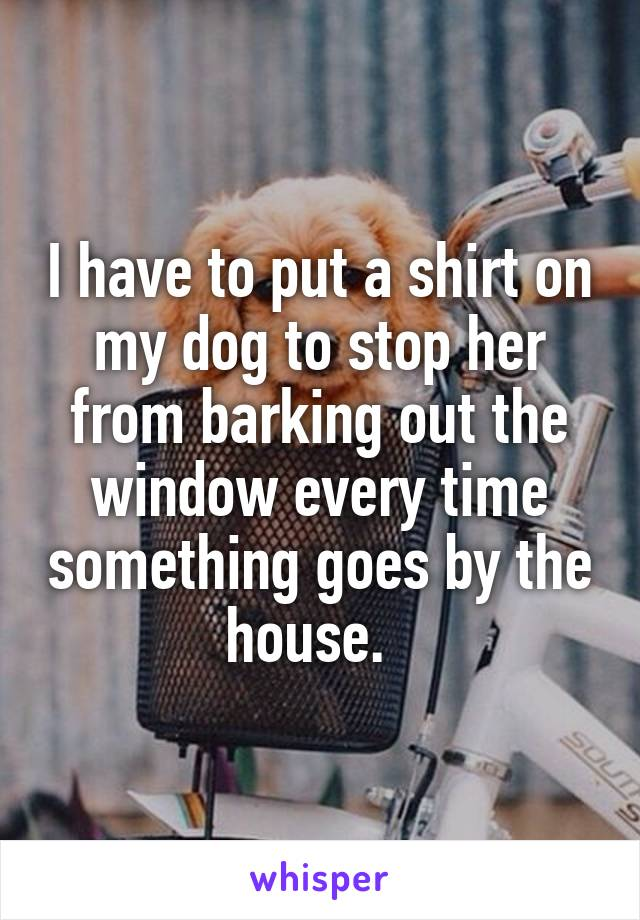 I have to put a shirt on my dog to stop her from barking out the window every time something goes by the house.