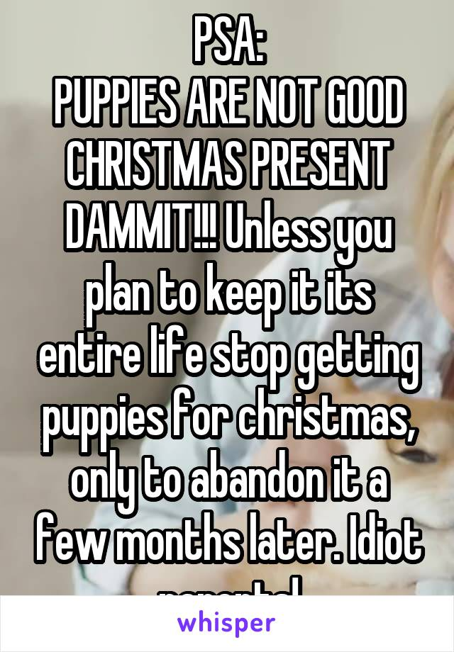 PSA: PUPPIES ARE NOT GOOD CHRISTMAS PRESENT DAMMIT!!! Unless you plan to keep it its entire life stop getting puppies for christmas, only to abandon it a few months later. Idiot parents!