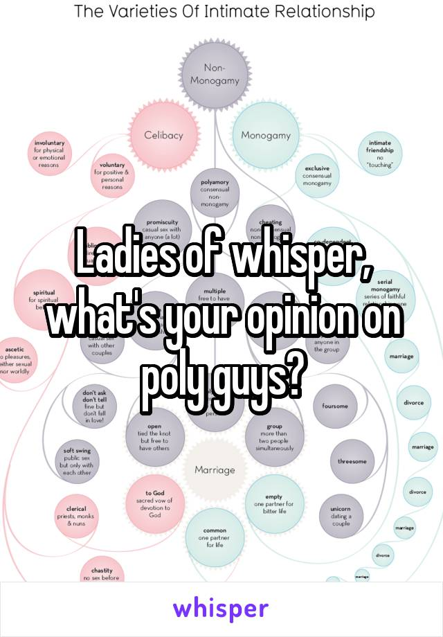 Ladies of whisper, what's your opinion on poly guys?