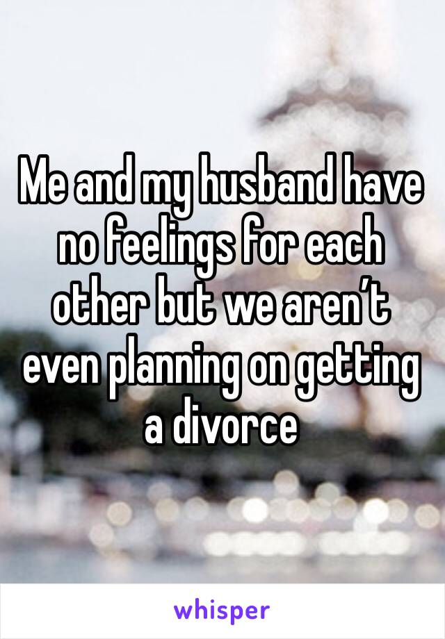 Me and my husband have no feelings for each other but we aren't even planning on getting a divorce
