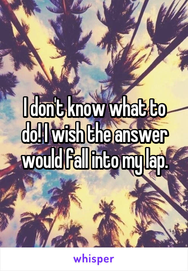I don't know what to do! I wish the answer would fall into my lap.