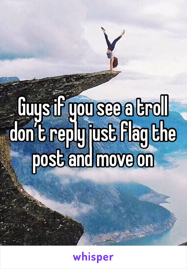 Guys if you see a troll don't reply just flag the post and move on