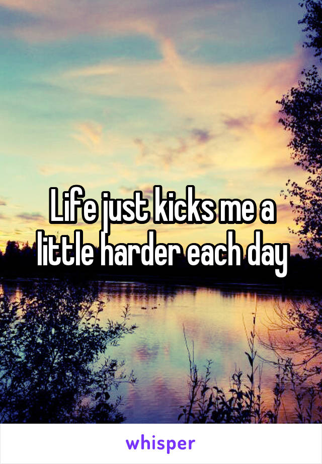 Life just kicks me a little harder each day