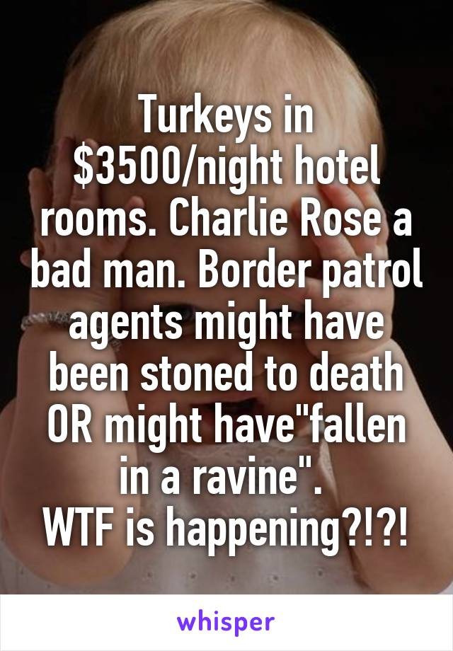 "Turkeys in $3500/night hotel rooms. Charlie Rose a bad man. Border patrol agents might have been stoned to death OR might have""fallen in a ravine"".  WTF is happening?!?!"