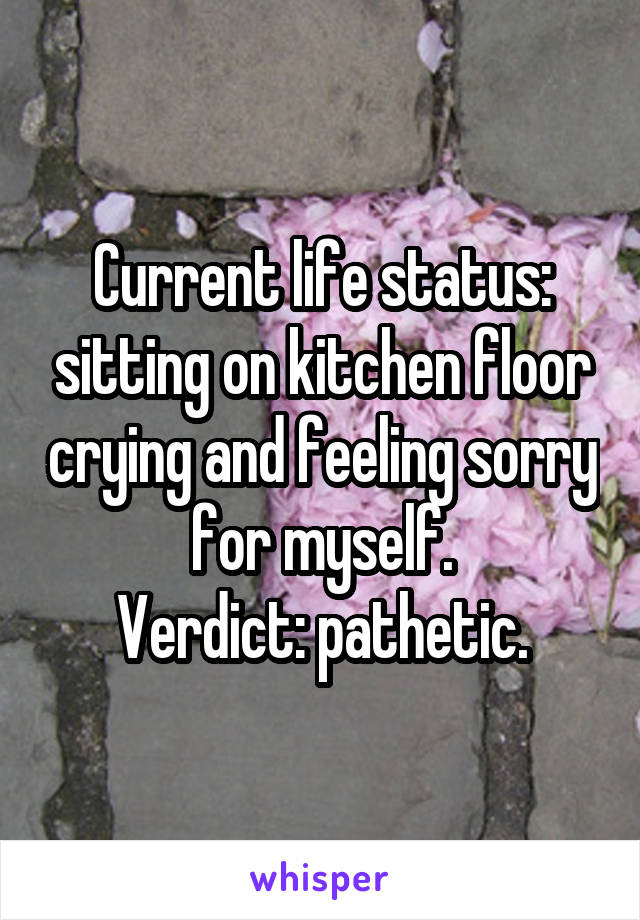 Current life status: sitting on kitchen floor crying and feeling sorry for myself. Verdict: pathetic.