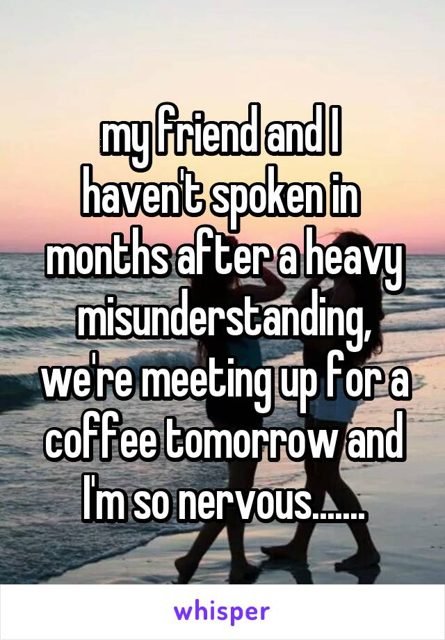 my friend and I  haven't spoken in  months after a heavy misunderstanding, we're meeting up for a coffee tomorrow and I'm so nervous.......