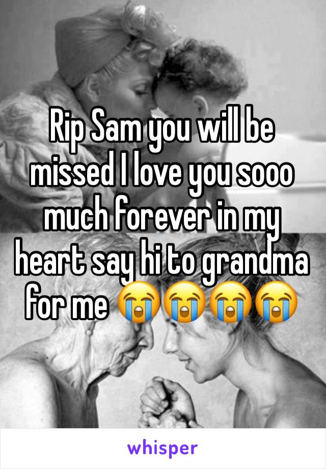 Rip Sam you will be missed I love you sooo much forever in my heart say hi to grandma for me 😭😭😭😭