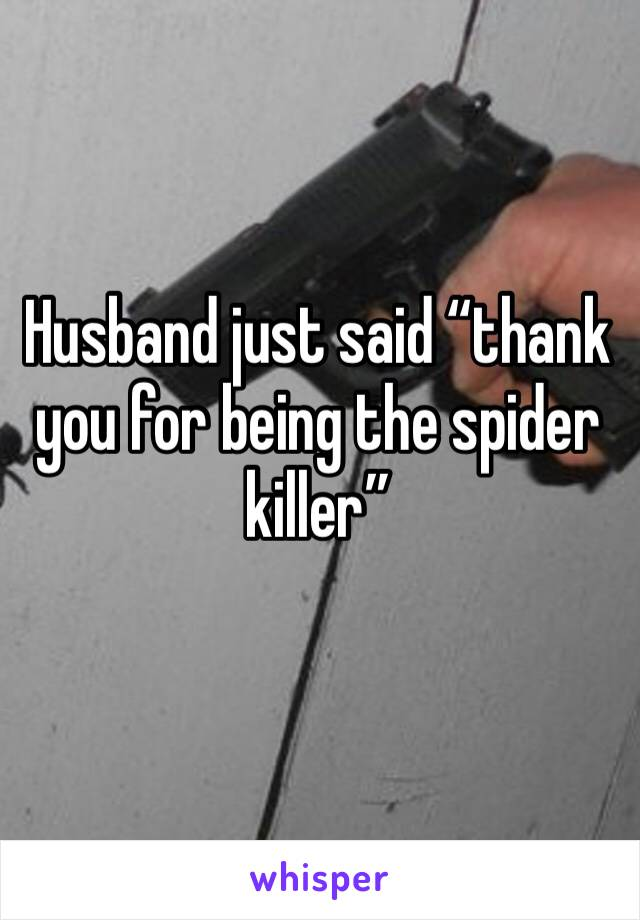 "Husband just said ""thank you for being the spider killer"""