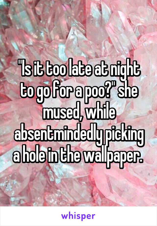 """""""Is it too late at night to go for a poo?"""" she mused, while absentmindedly picking a hole in the wallpaper."""