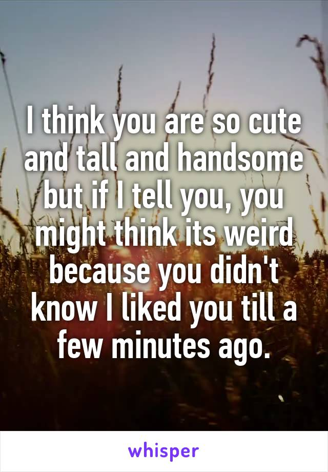 I think you are so cute and tall and handsome but if I tell you, you might think its weird because you didn't know I liked you till a few minutes ago.