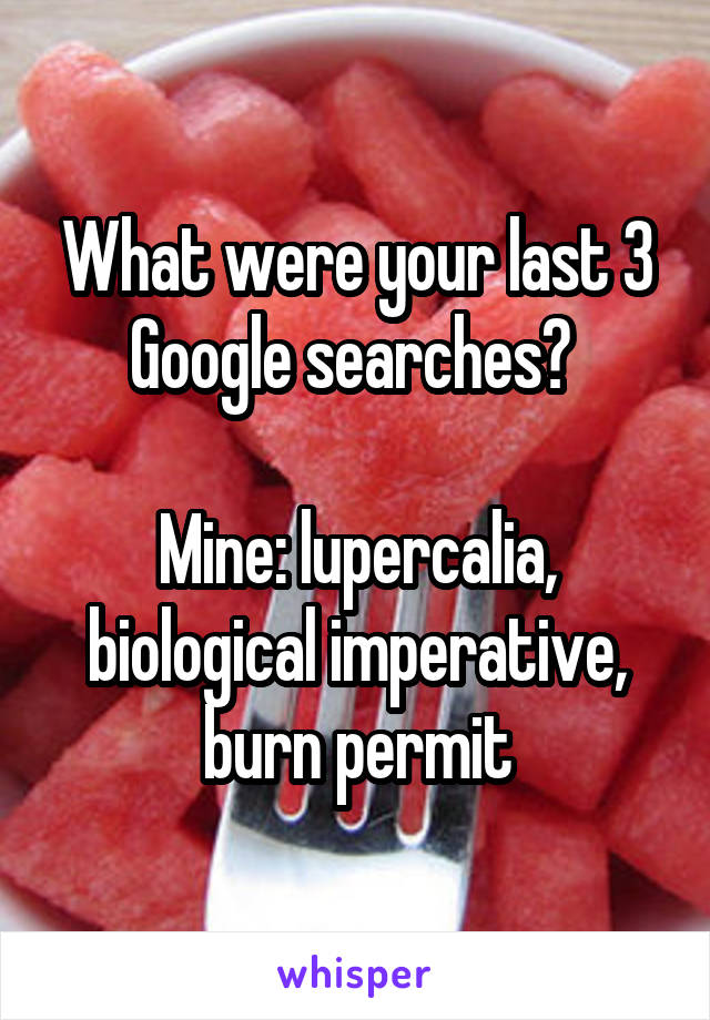 What were your last 3 Google searches?   Mine: lupercalia, biological imperative, burn permit