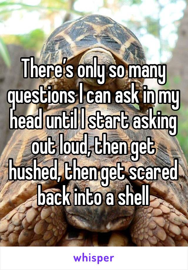 There's only so many questions l can ask in my head until l start asking out loud, then get hushed, then get scared back into a shell