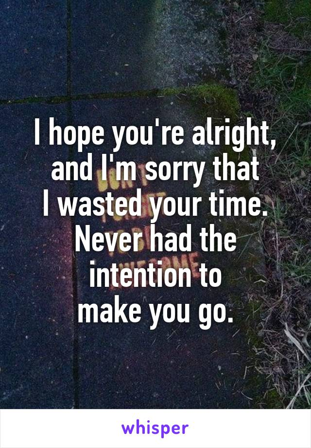 I hope you're alright, and I'm sorry that I wasted your time. Never had the intention to make you go.