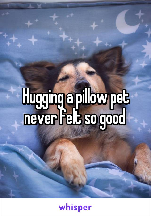Hugging a pillow pet never felt so good